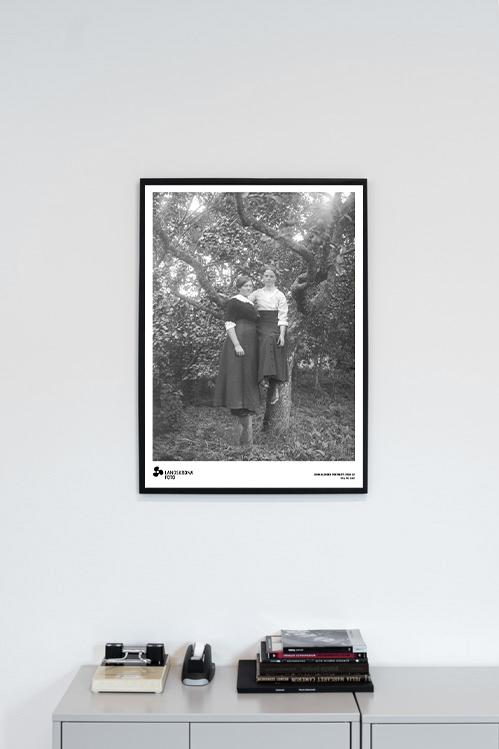 Poster - John Alinder Porträtt 1910-32 NEG. NO. 0182 50x70cm