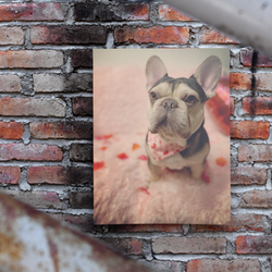Frenchie Love Poster