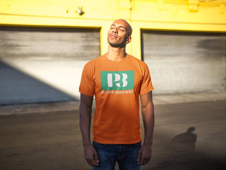 T-Shirt årets artist Guldgalan P3. Tröjor i flertalet färger & storlekar