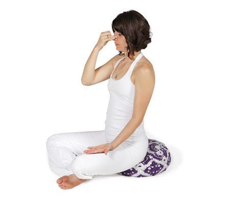 Meditationskudde Chattra Zafu från Chattra - Plum Bagh