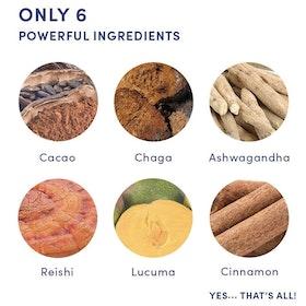 Magic Mushroom - Your Superfoods