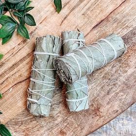 Salviabunt Eucalyptus sage