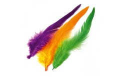 Schlappen Feathers