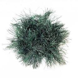 NTS Freakish Fringe - Green/Black