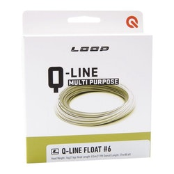 Loop Q Line WF6 - NY
