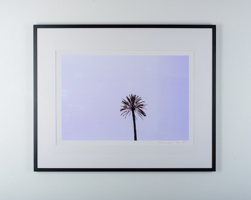 """suburra palm"" black frame"