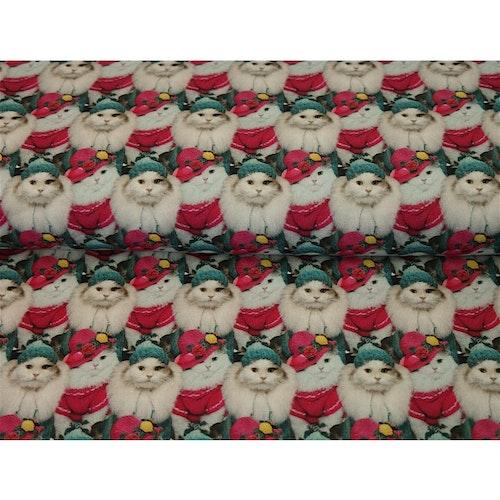 Katter på julen