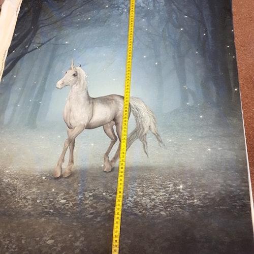 Rapport - Häst i natten