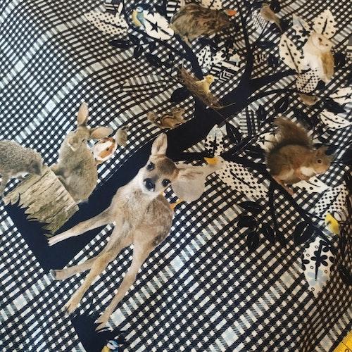 Rapport marsvin rådjur hare igelkott