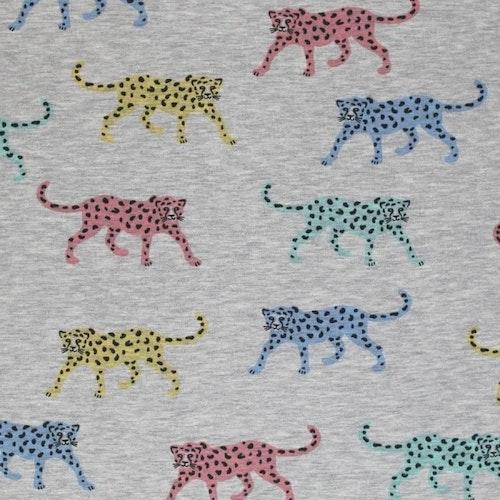 Bomullstrikå - Grå botten, flerfärgade tigrar