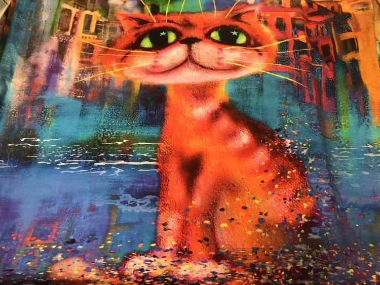 Rapport - Crazy cat liten