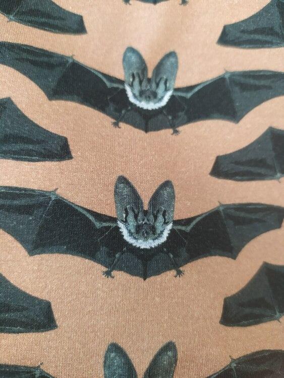 Bomullstrikå - Fladdermöss ljus mjölkchoklad bottenfärg