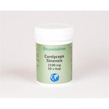 Cordyceps Sinensis 50 kapslar