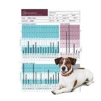Hårmineralanalys Hund Inkl. 30 minuters genomgång
