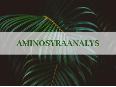 Aminosyraanalys i urin inkl. 30 minuters genomgång