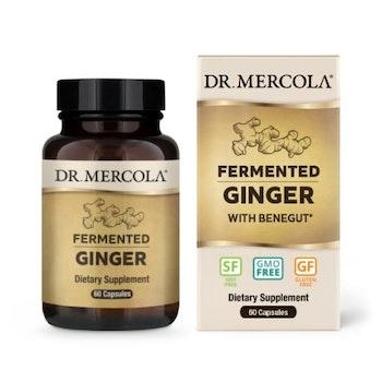 Fermented Ginger 60 kapslar Dr. Mercola