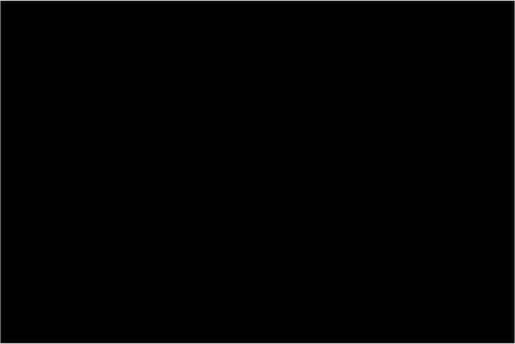 SVART WEEDEX 1002W  - B 50cm - mv