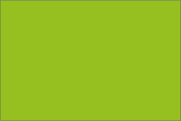Premium Äppelgrön 1067 - B 50cm - mv