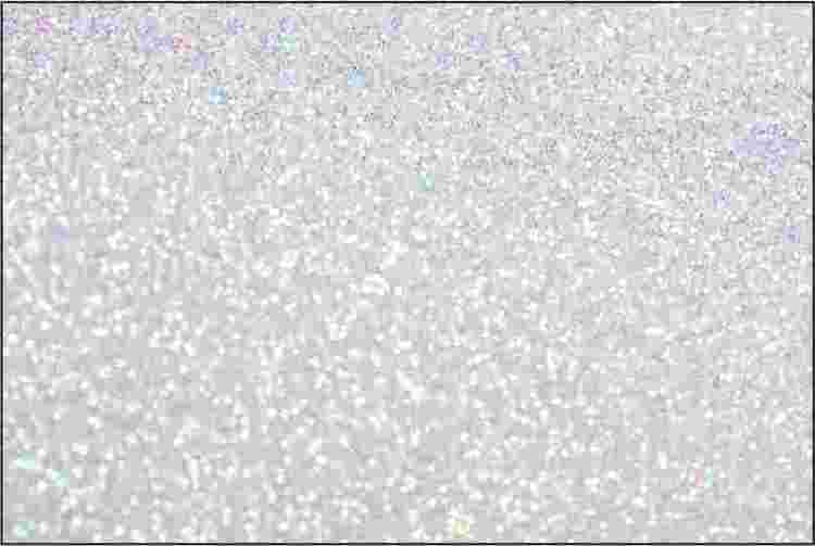 PET Glitter  Pärlvit - 6193