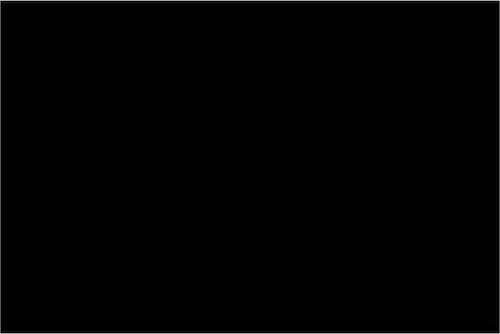 Svart - Nylon 3902 NF