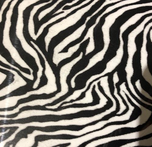 SEF Zebra