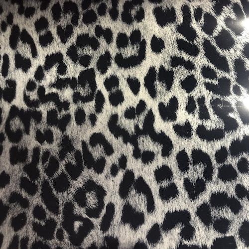 Leopard- Svart/silver storfläckig leopard
