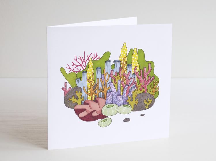 Korallrevet - Dubbelvikt kort