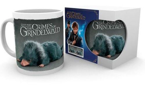 Mugg Fantastic Beasts Einstein