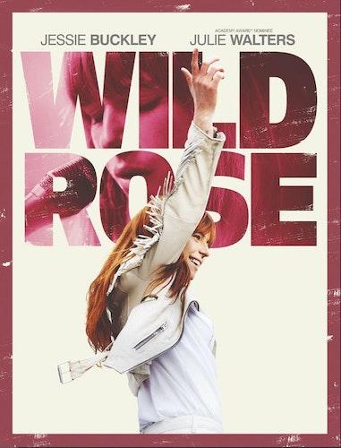 Wild Rose DVD