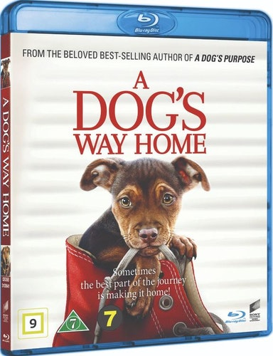 A Dog's Way Home bluray