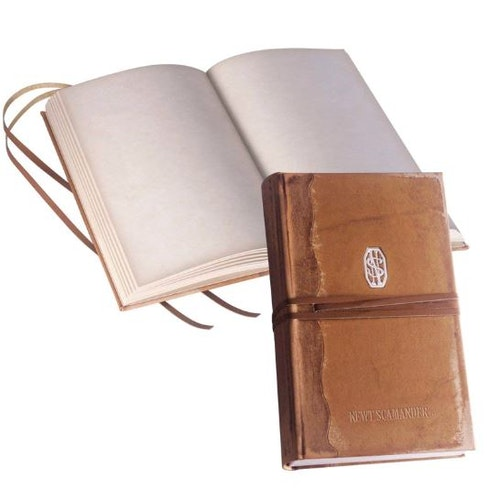 Fantastic Beasts Newt Scamander dagbok