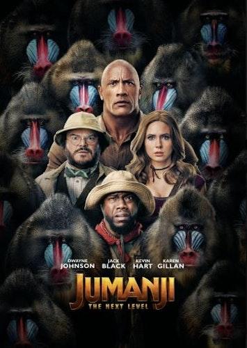 Jumanji: The Next Level (Bluray)