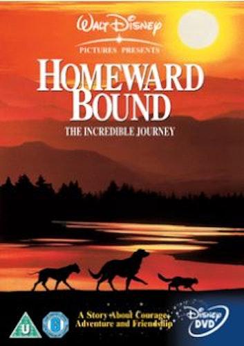 Den otroliga vandringen DVD (import)