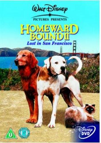 Den otroliga vandringen 2 DVD