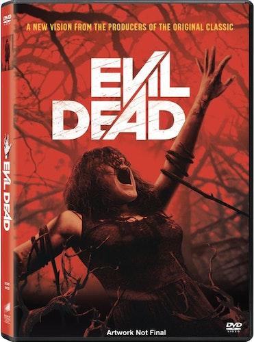 Evil Dead (2013) DVD