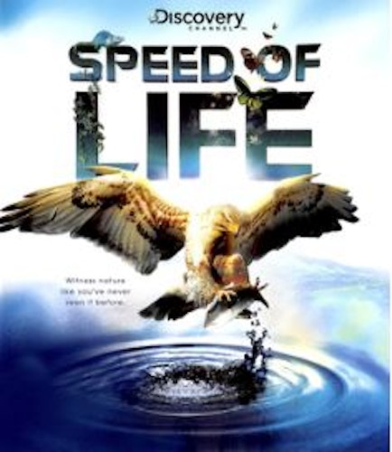 Speed Of Life Blu-Ray (import)