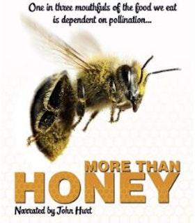 Inte bara honung/More Than Honey bluray (import)