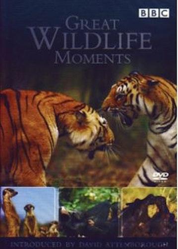 Great Wildlife Moments - David Attenborough DVD (import)