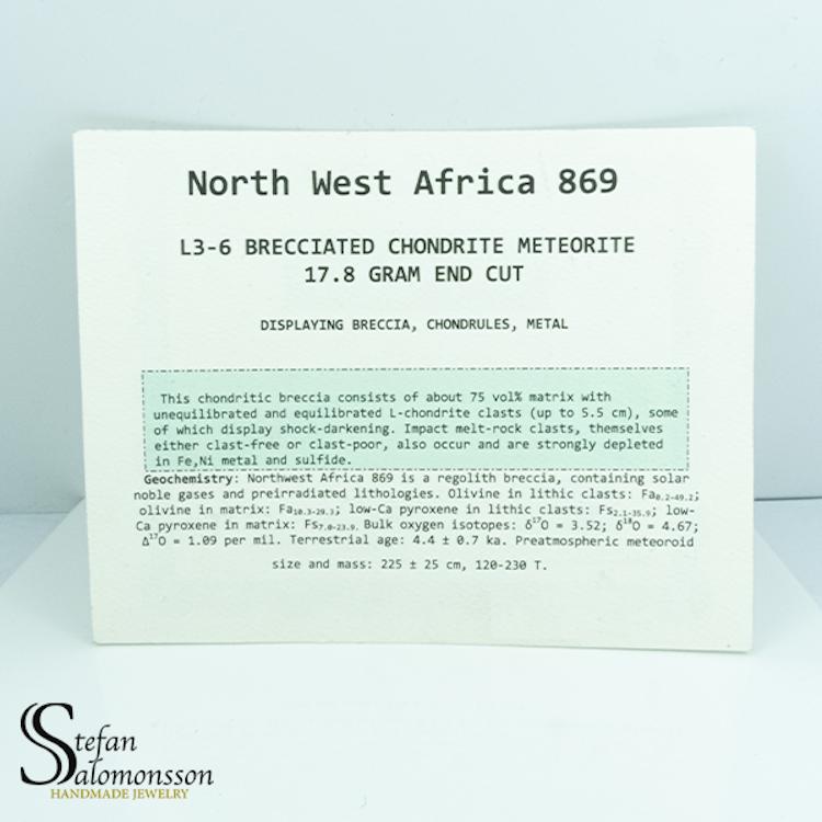 NWA 869 L3 CHONDRITE 17.8g