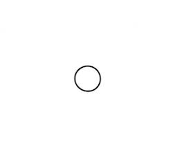O-ring till Bosch insprutningspump Lombardini 502