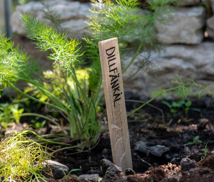 Planteringspinnar/Planteringsskyltar