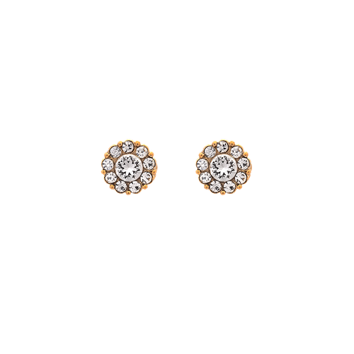 Lily and Rose - Petite Miss Sofia Earrings - Crystal ( Gold )