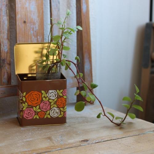 Plåtburk - Brun med Blommor