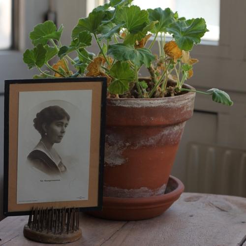 Fotografi - Kronprinsessan Margareta