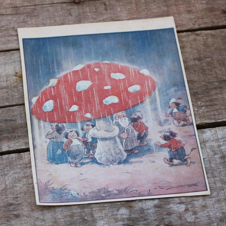 Barnkammarbild - 26 Regnskydd under flugsvamp