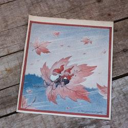 Barnkammarbild - 15 Tomtar åker på löv