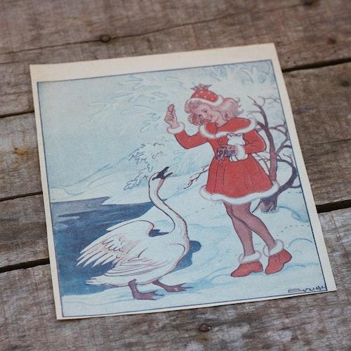 Barnkammarbild - 8 Prinsessa matar svan