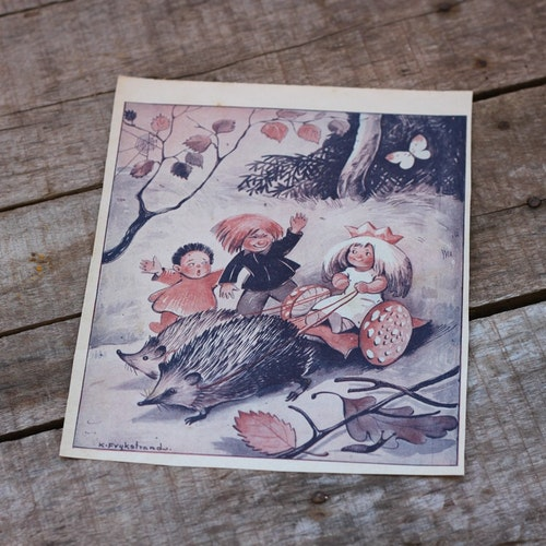 Barnkammarbild - 7 Igelkottar och Trollbarn