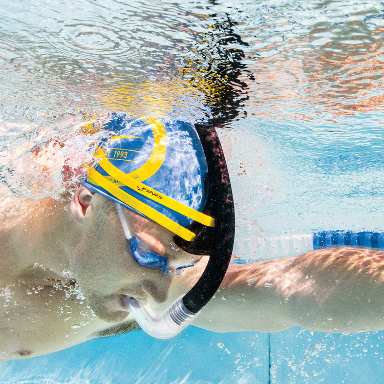 Simsnorkel Stability Finis