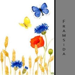 Akvarellkort - Vallmo